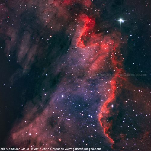 The Great Cygnus Wall & Dark Molecular Cloud