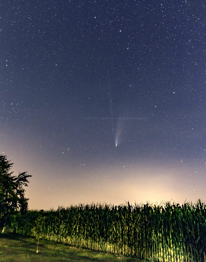 Comet NEOWISE Over Ohio Cornfield