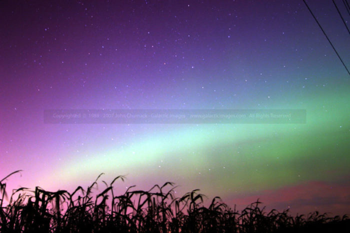 Aurora Borealis photo over Corn Field