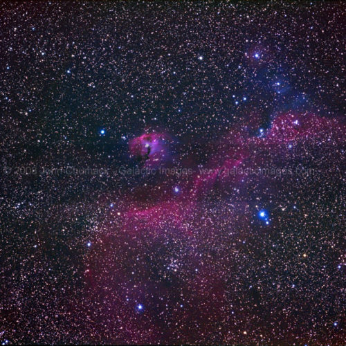 IC2177 The Seagull Nebula Complex Photos