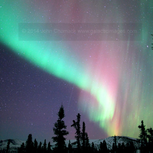 Alaska Aurora Borealis Photo #1730