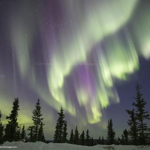 Alaska Aurora 2015 Photo #4291