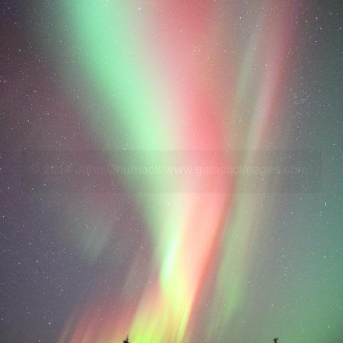 Alaska Aurora Borealis Photo #1631