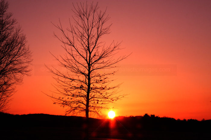 Sunset Photos - Valley Forge Photos